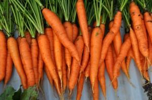 traim-sanatos-morcovi